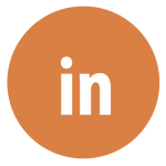 LI-icon